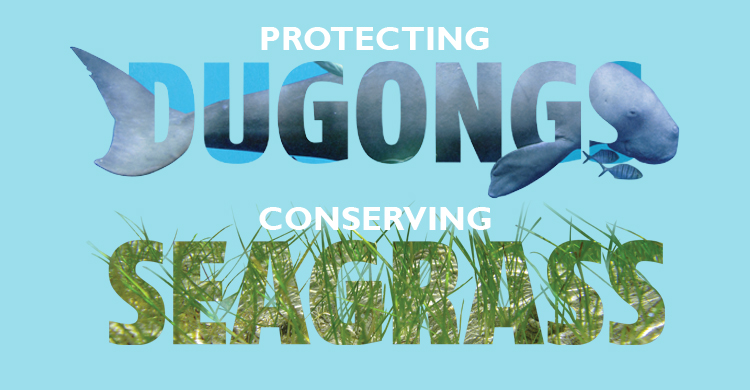 Seagrass and Dugong Technical Workshop