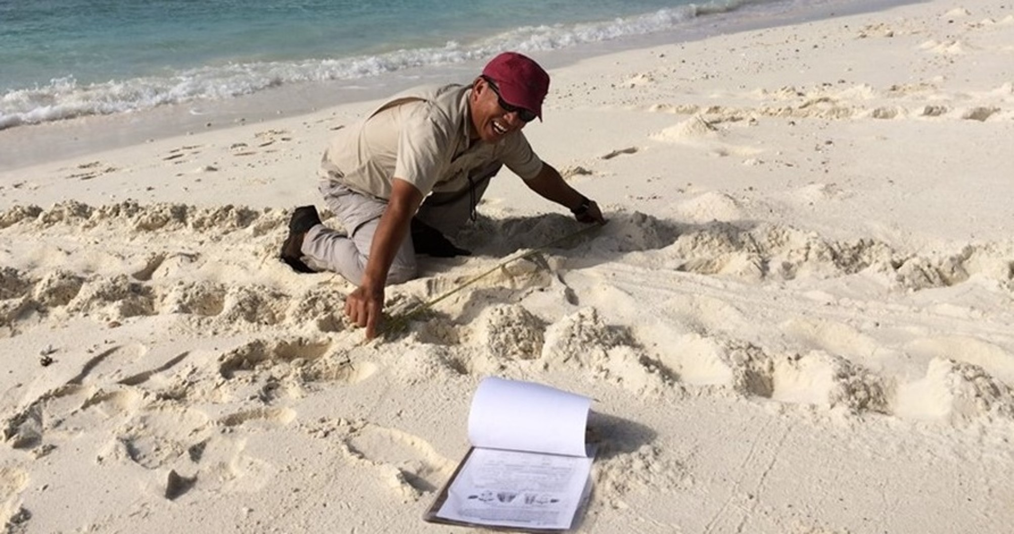 Two-weekly turtle track surveys take place on the Index Beach in Diego Garcia to inform population estimates for hawksbill and green turtles © Nicole Esteban & Graeme Hays