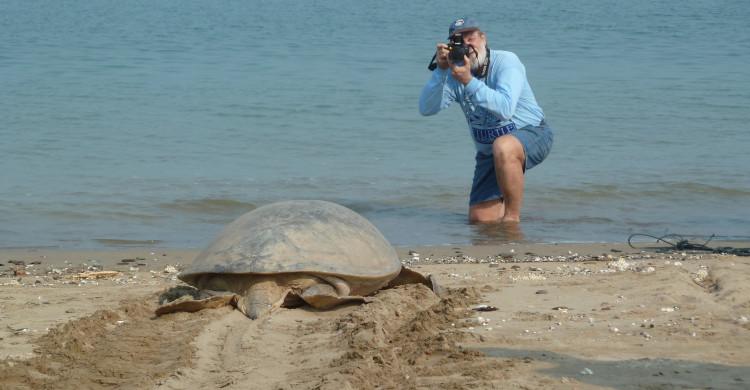 Dr Col Limpus - recording green turtle nesting on Diamond Island, Myanmar, in 2012