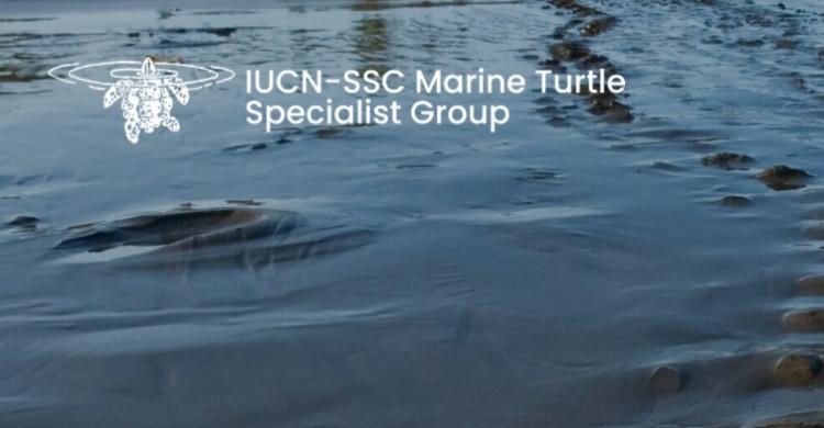 © IUCN-SSC Marine Turtle Specialist Group