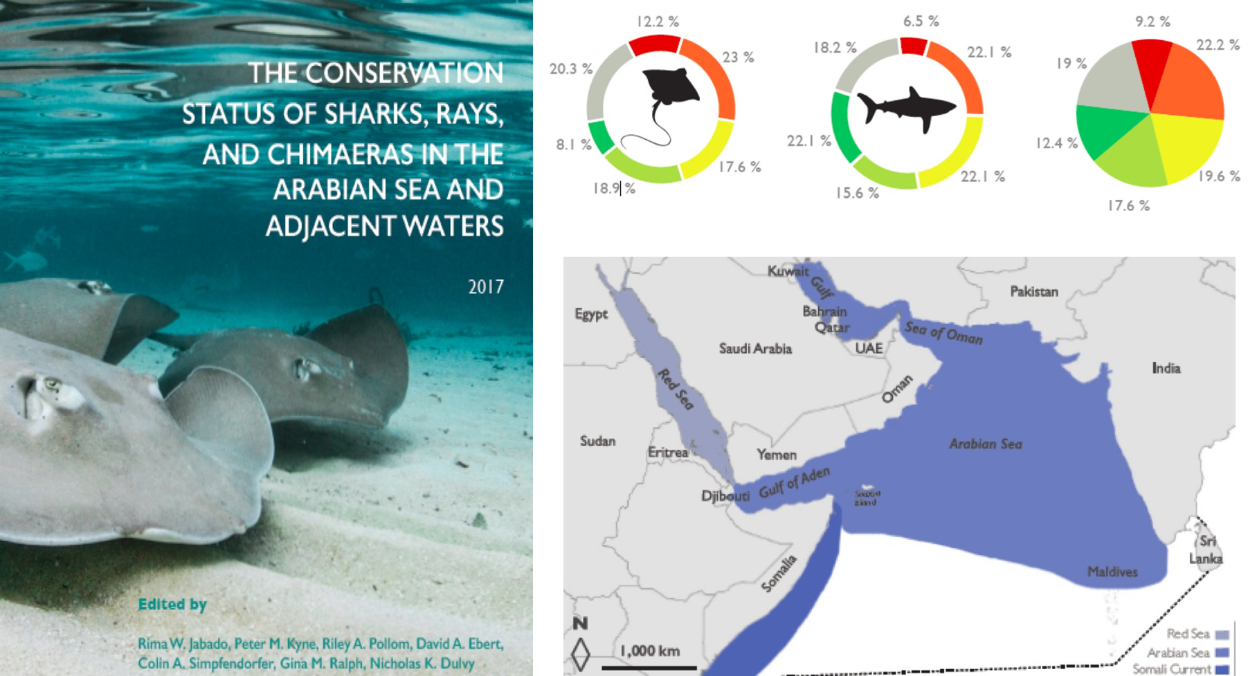 IUCN Red List assessment for Sharks, Rays, and Chimaeras of the Arabian Sea and adjacent Waters