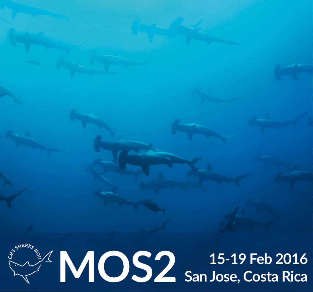 Sharks Meeting of Signatories 2 in San jose, Costa Rica 15 to 19 february 2016