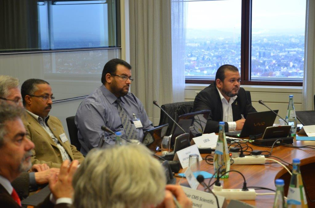 International Coordination Meeting Agrees on a Plan of