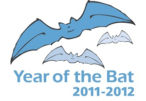 Year of the Bat 2011-2012 Logo