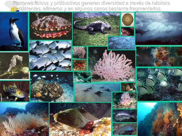 Extract of presentation © Government of Ecuador