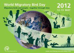 World Migratory Bird Day 2012 Poster