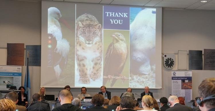 45ème session du Comité permanent de la CMS - 9-10 novembre 2016, Bonn, Allemagne