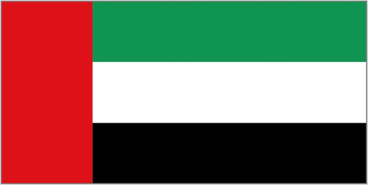 The flag of the United Arab Emirates