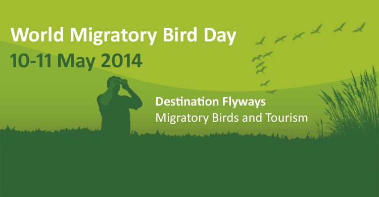 WMBD 2014 - Destination Flyways: Migratory Birds and Tourism