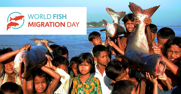 Children carrying river catfish Tonlé Sap - © Zeb Hogan