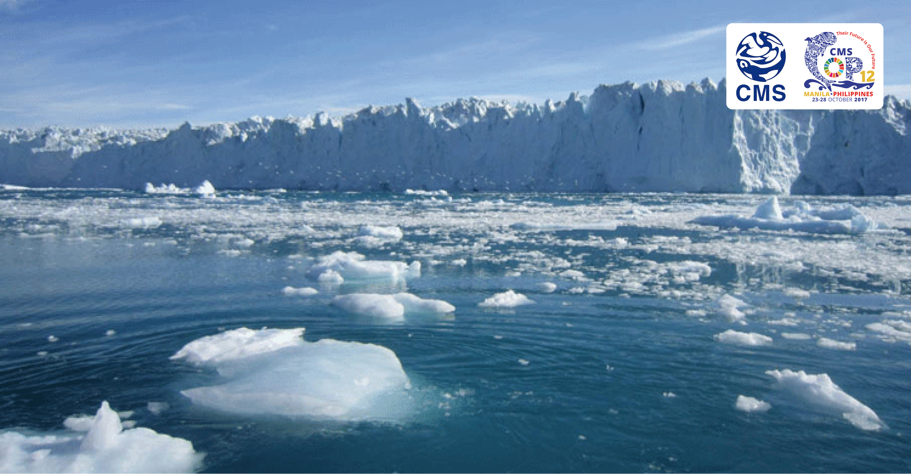 Melting polar ice © NASA/JPL/Rignot