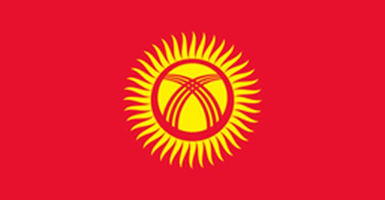 the flag of Kyrgyzstan