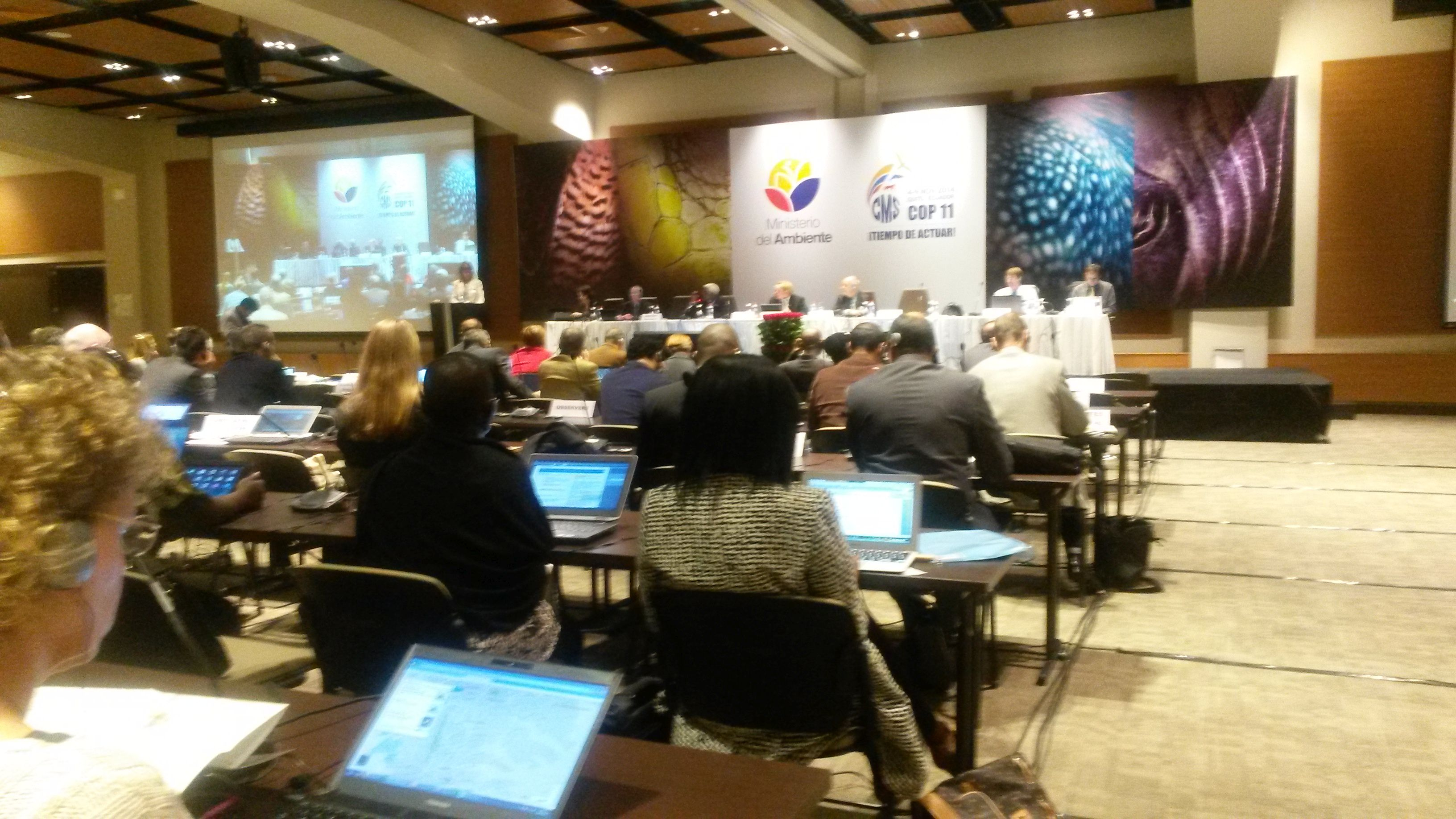Standing Committee, 2 November © Florian Keil, UNEP/AEWA