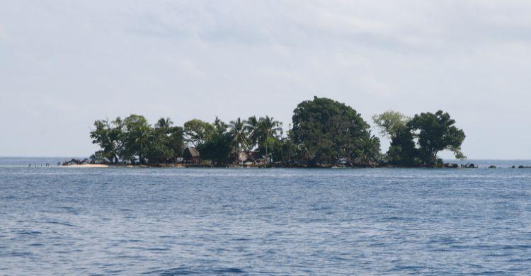 Papua New Guinea © H Frisch UNEP/CMS