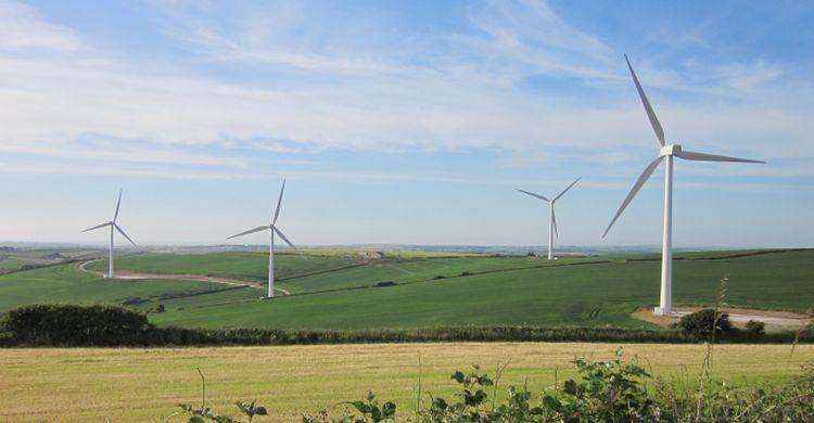 Wind Turbines, UK  © Robert Vagg UNEP/CMS