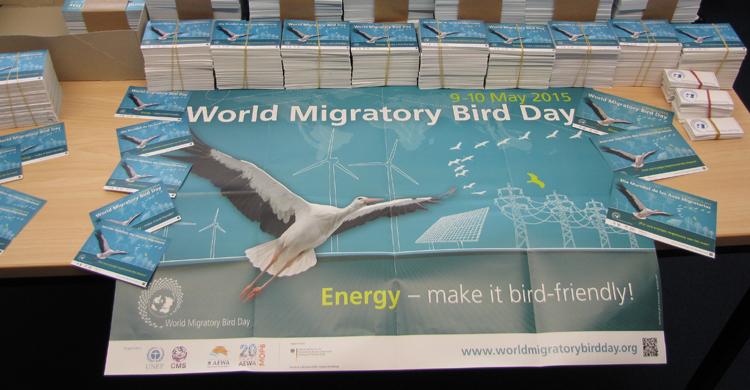 WMBD 2015 Information Materials
