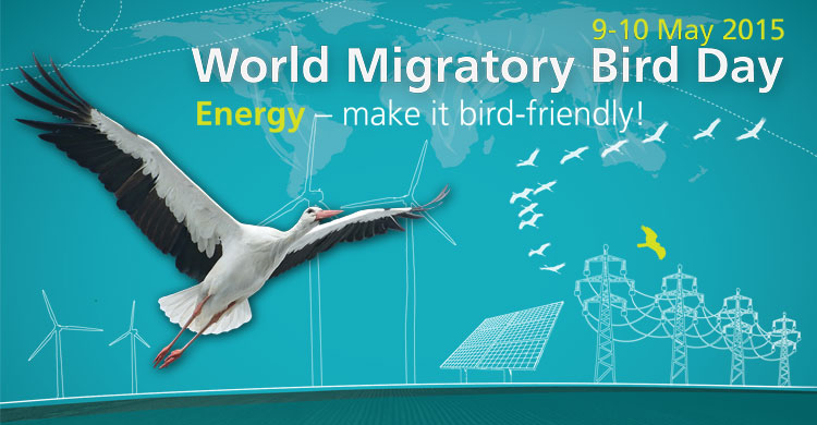 Opinion: Towards a World United for Migratory Birds | CMS