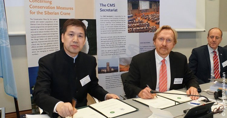 Zhou Jinfeng and Bradnee Chambers sign CMS - CBCGDF partnership agreement © Aydin Bahramlouian