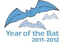 Year of the Bat 2011-2012 Logo