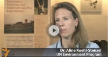 Dr. Aline Kühl-Stenzel interviewed on the Saiga sudden die off