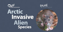CAFF Arctic Invasive Alien Species (ARIAS) Strategy and Action Plan