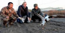 Bradnee Chambers (al centro) libera un tarro blanco en el Área de conservación de China para las aves acuáticas en Tang Shan © Linda Wong