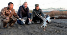 Bradnee Chambers (centre) releases a Common Shellduck at  China Conservation Area for Waterbirds at Tang Shan © Linda Wong