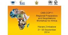 Zimbabwe pre-COP Workshop