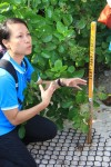 Field worker at Chagar Hutang